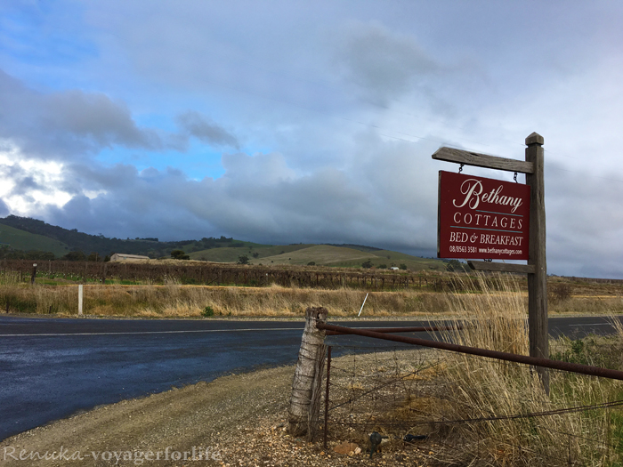 My Solo Adventure In South Australia – BAROSSA VALLEY