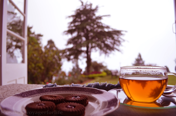 My Favourite 'Chai' Experiences In India