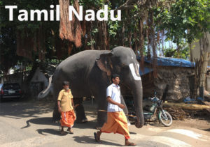 Travel blogs on Tamil Nadu