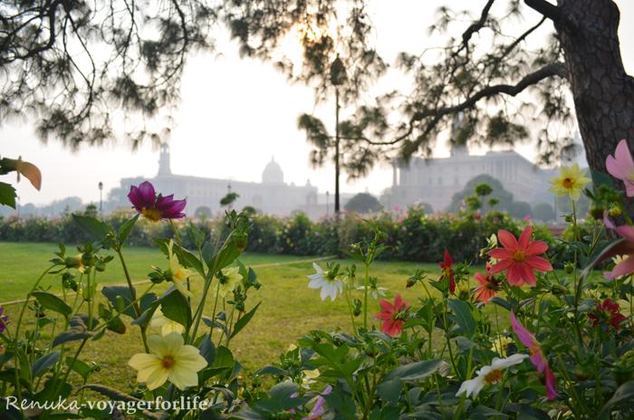 Beautiful Spring In Delhi