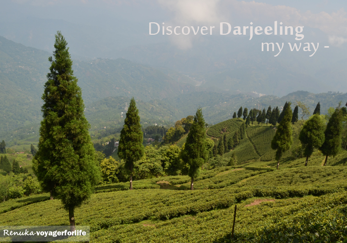 That's How I Discovered Darjeeling