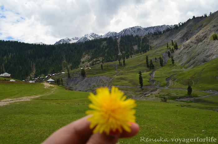 The Unsung Valleys Of Kashmir