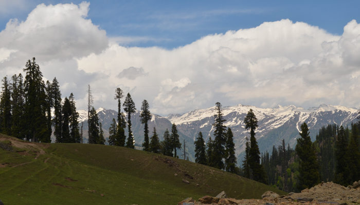 5 Reasons Northern Kashmir Is Calling You!