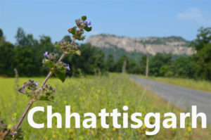 Travel blogs on Chhattisgarh