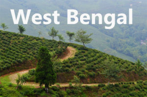 Travel blogs on West Bengal