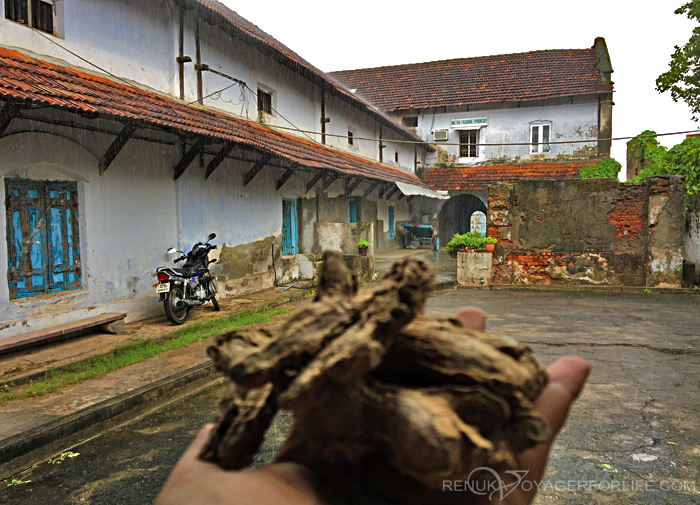 Dry ginger factory in Jew Town Kochi