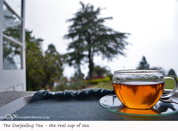 Darjeeling tea estates