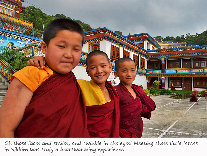 Young lamas of Sikkim