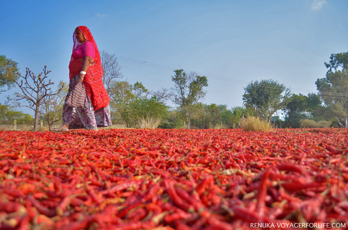 The Women Of India (Beyond The Cities) – A Photo Essay
