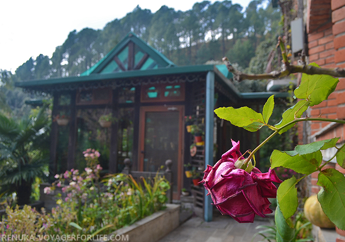 IMG-Boutique homestays in India