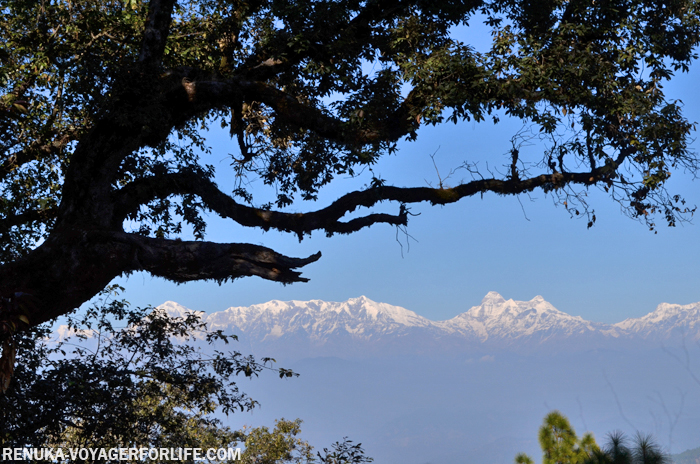 IMG-Binsar is one of the best places to view the Himalayas