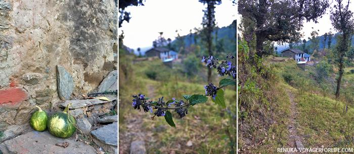 IMG-Gaunap village Binsar