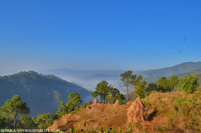 IMG-Palyun Maychak Almora hills