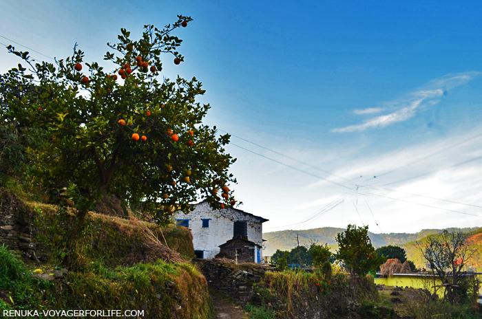 IMG-Villages of Almora Kumaon